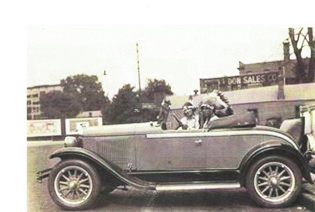 Eagle-White Fawn-car